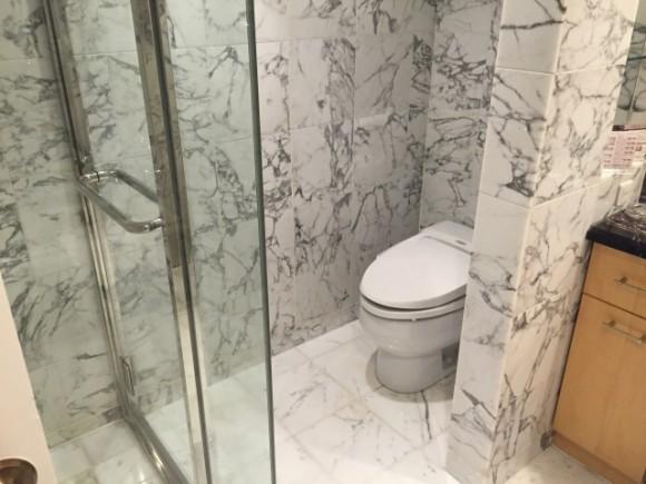 トイレの床の色画像