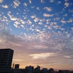新鎌ヶ谷 マンション 購入画像