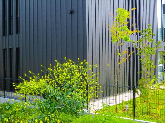 注文住宅のランキング・東京画像