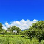 田舎土地有効活用画像