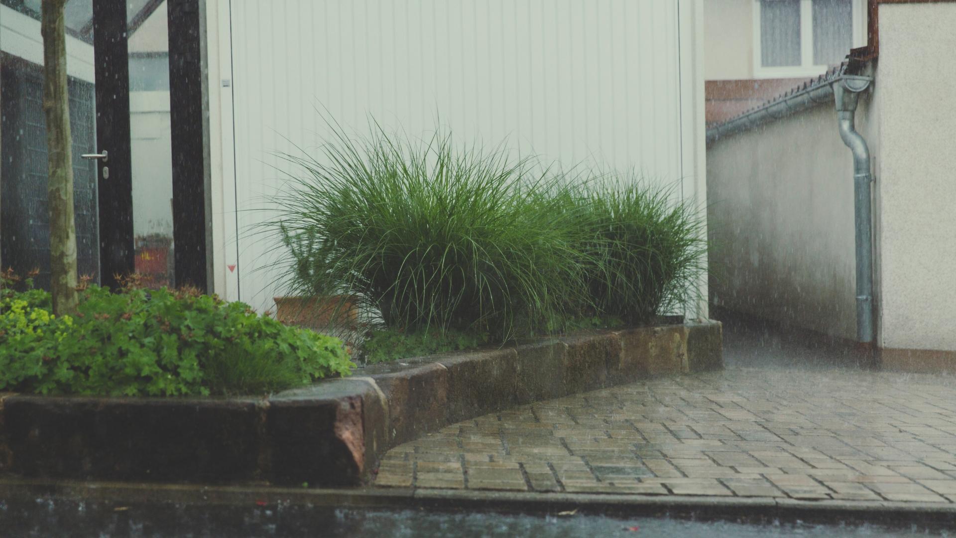 中庭 雨よけイメージ画像